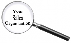 Understanding Your Sales Organization's Ability to Execute is Essential 4 for Scaling Sales Success