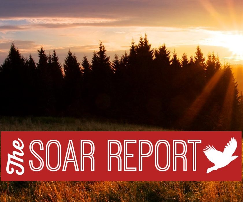 The SOAR Report | SOAR Performance Group | Sales Performance