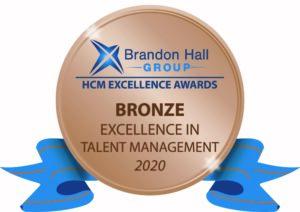 Brandon Hall Award for Best Team Development Program